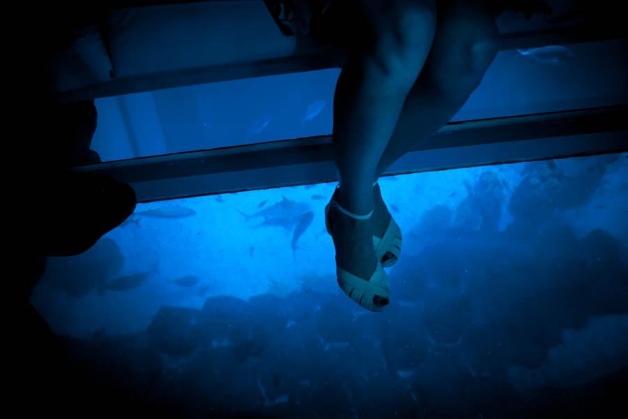 09 Aquaria