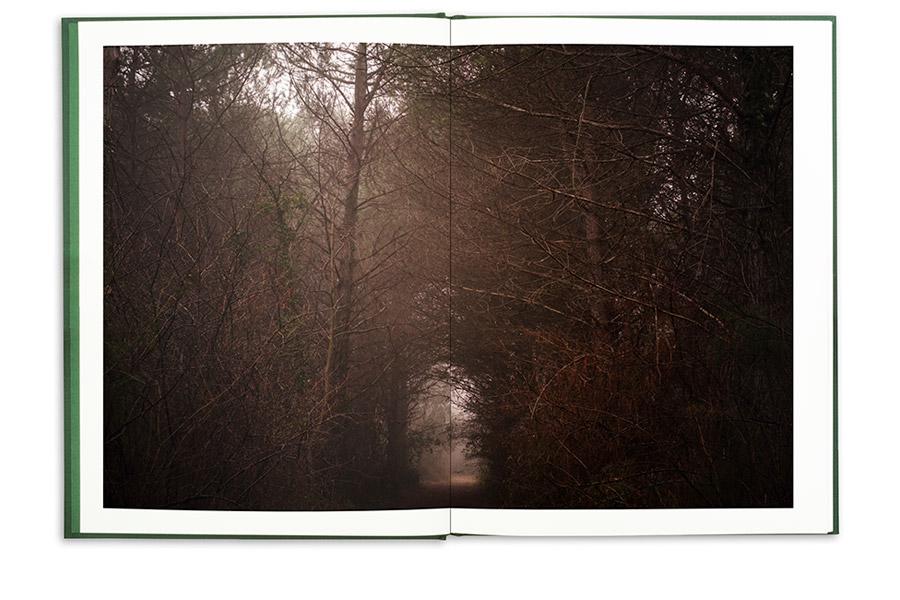 0105-La-Divina-Foresta-Spessa-e-Viva-APR-2021-pp2-3